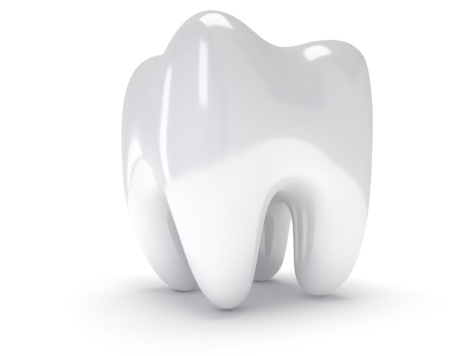 An image of a tooth over a white background | Sedation Dentistry St. Paul MN